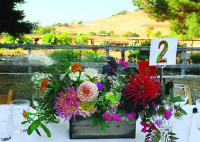 07-JBV Rancho Nicasio
