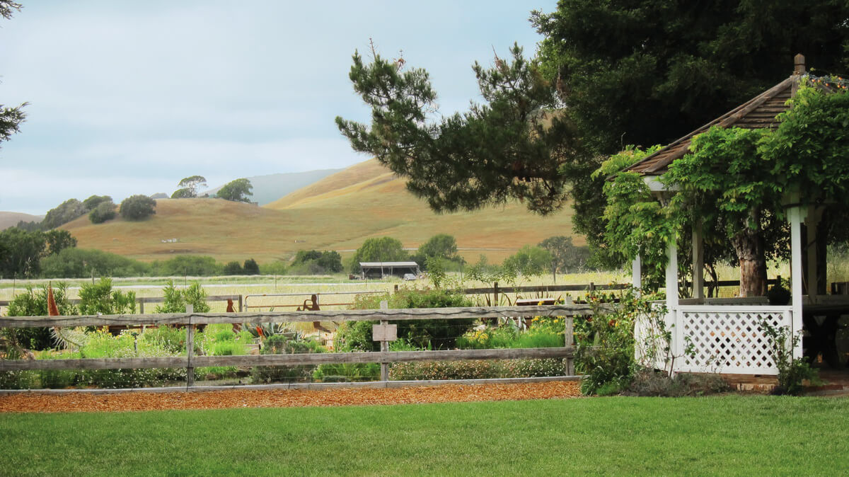 Rancho Nicasio - Photography by Jane Brown Voss-Lawn & Garden (1)