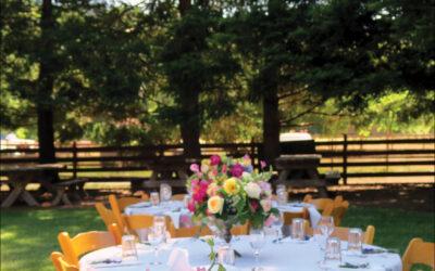 Weekday Intimate and Hybrid Weddings